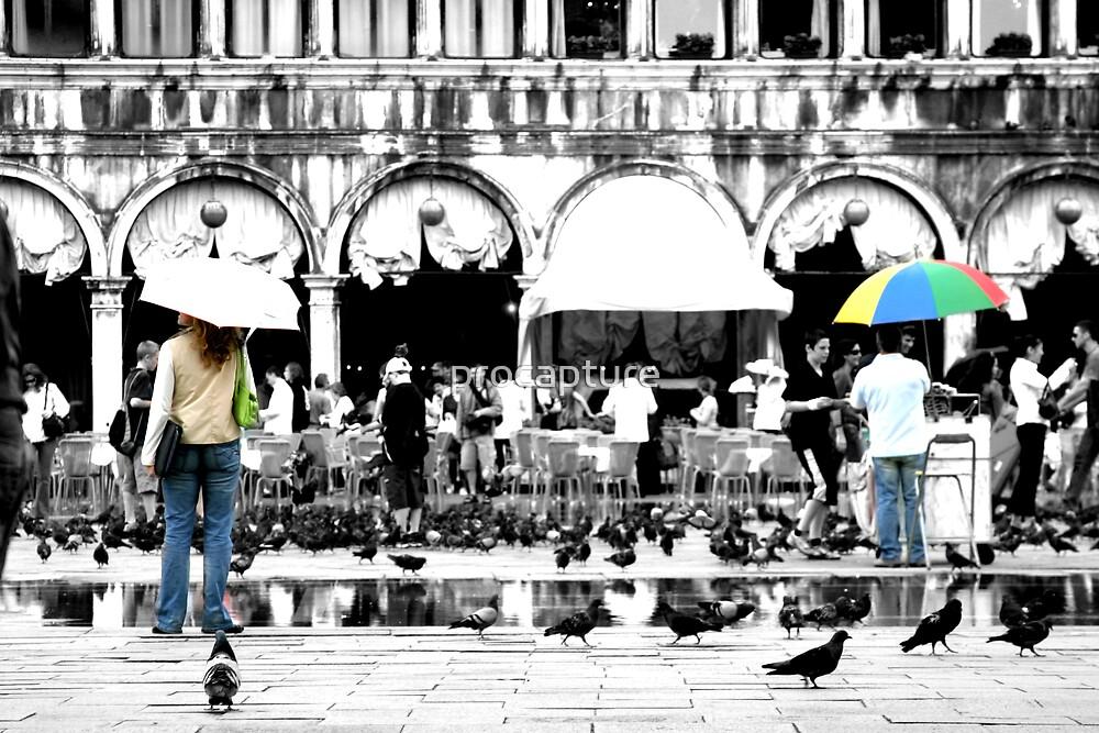 The umbrella by procapture