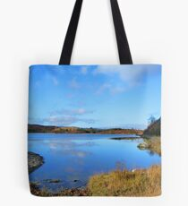 Loch Rotmell in Autumnal Weather Tote Bag