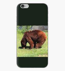 Cinnamon Black Bear iPhone Case