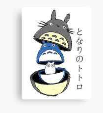 evolution totoro Canvas Print