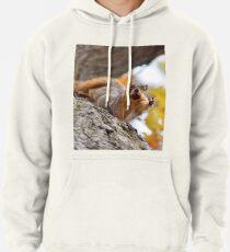 Squirrel Meme Pullover Hoodie