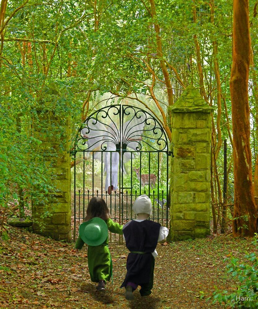 Magical Woodland Gates by Harri