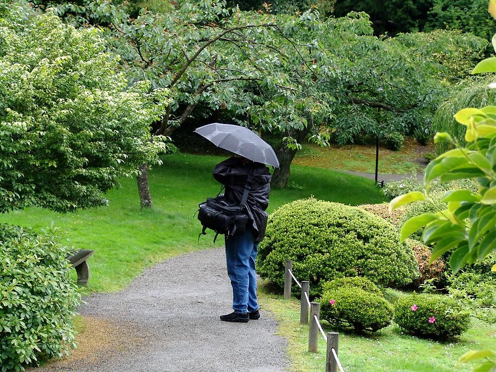 Rainy Day by Chris Filer