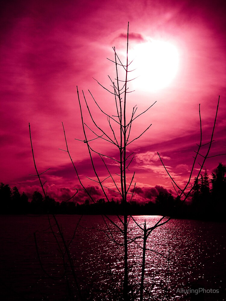 Deep Pink Lake by AlluringPhotos