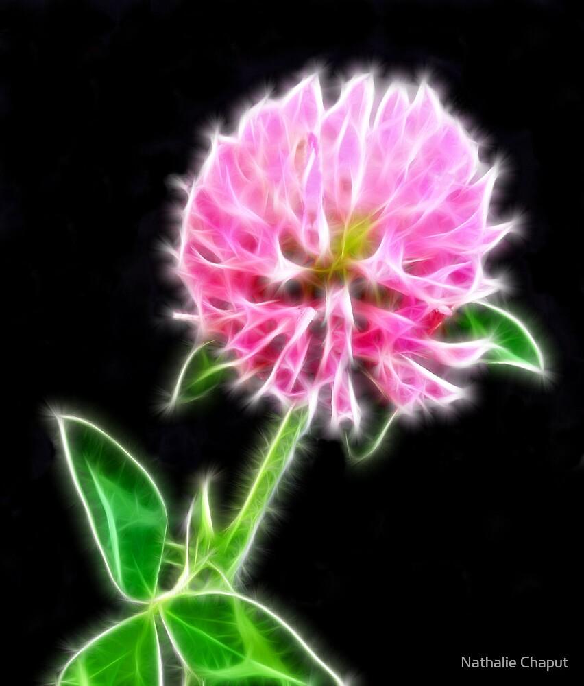 Clover Flower by Nathalie Chaput