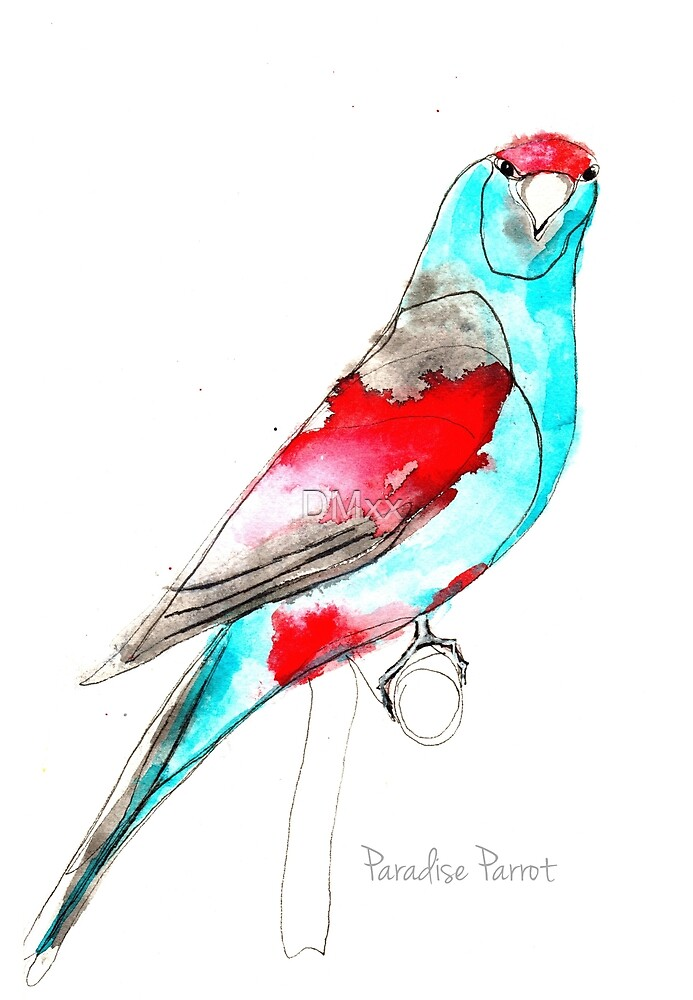 Birds in INK ~ Paradise Parrot by DMxx