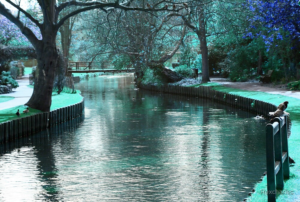 TRANQUIL  RIVER by Rexcharles