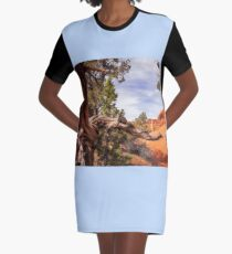 Unique desert beauty at Kodachrome Park in Utah Graphic T-Shirt Dress