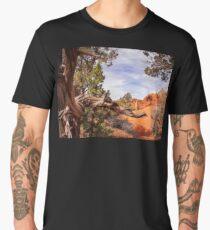 Unique desert beauty at Kodachrome Park in Utah Men's Premium T-Shirt