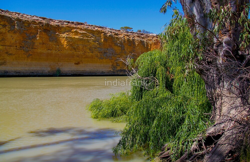 Murray's red cliffs by indiafrank
