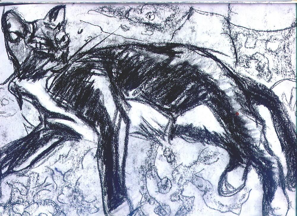 cat by gabriele