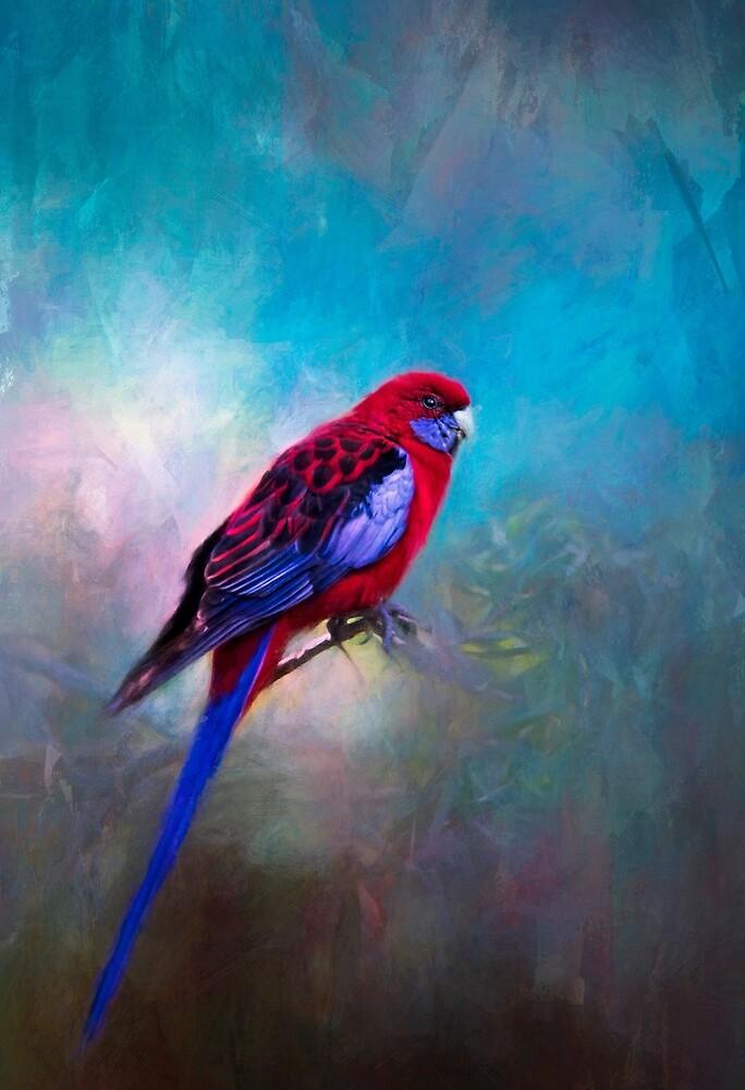 Visitor. by Lyn Darlington