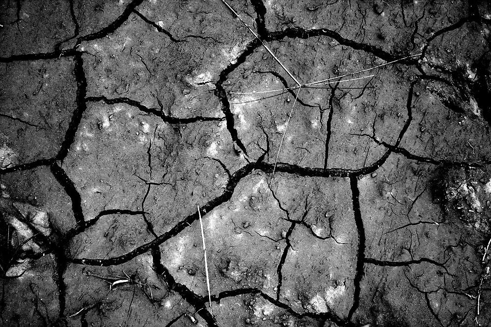 Dry  by x0xLaUrEnOcOx0x
