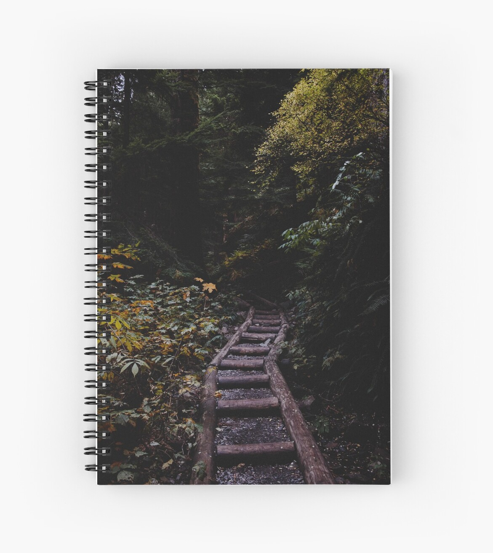 Waldweg von bellehibou