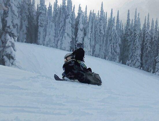 Snowmobiling Fool  - Snowmobiler by NaturePrints