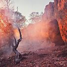 Fire on the Mountain by Jemma Ryan