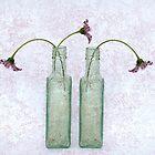 Three Gerberas in Two Bottles by cherryannette