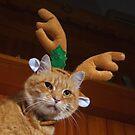 Baldrick the ginger reindeer by turniptowers