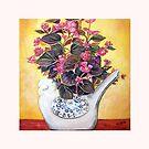 Begonias by Linda Callaghan