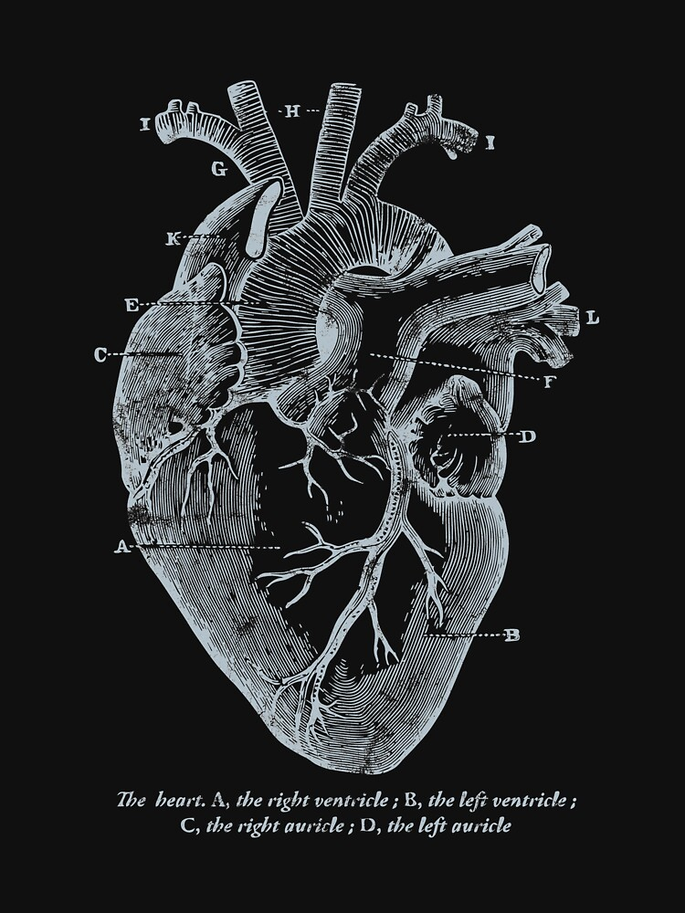 Parts Of Heart Awesome Cardiology Parts Of The Heart Classic T