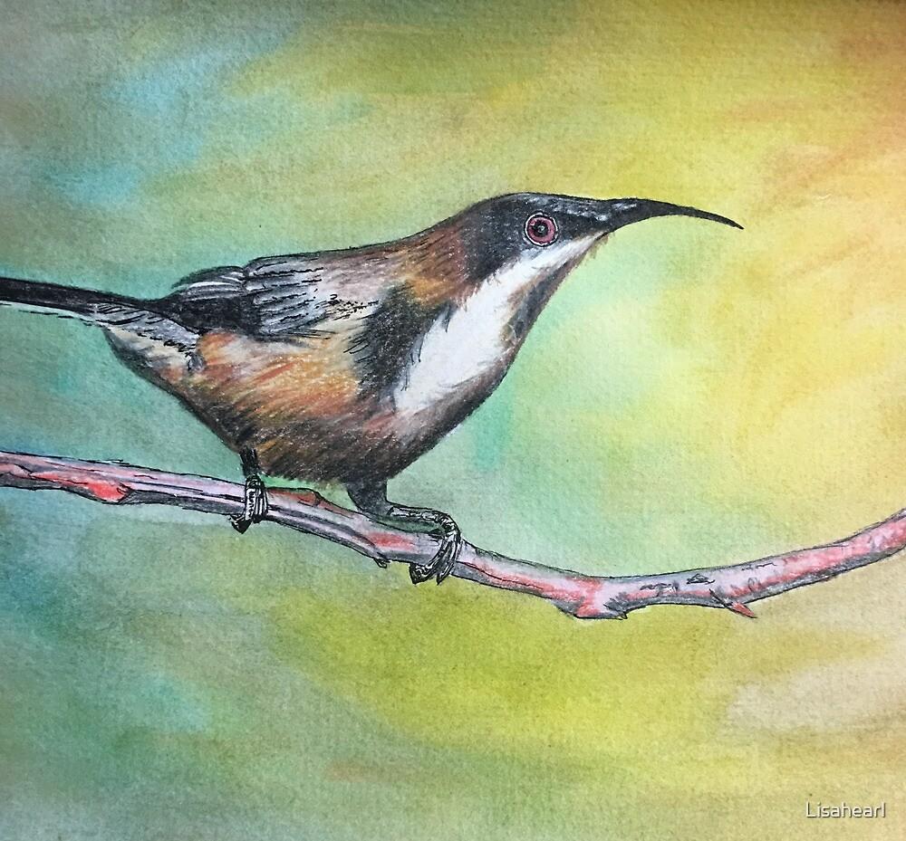 Sweet birdy by Lisahearl