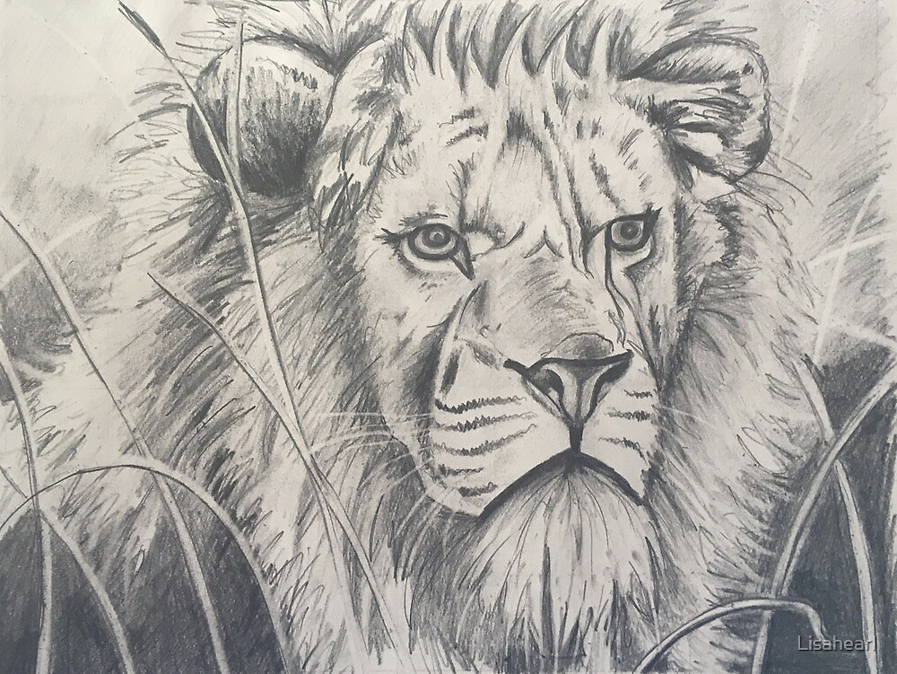 Proud lion by Lisahearl