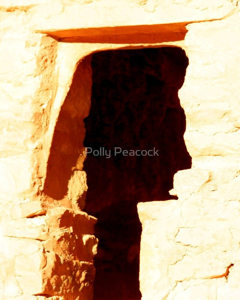 Native Mesa by Polly Peacock