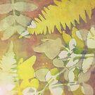 Ferns  by LucyBrydonArt