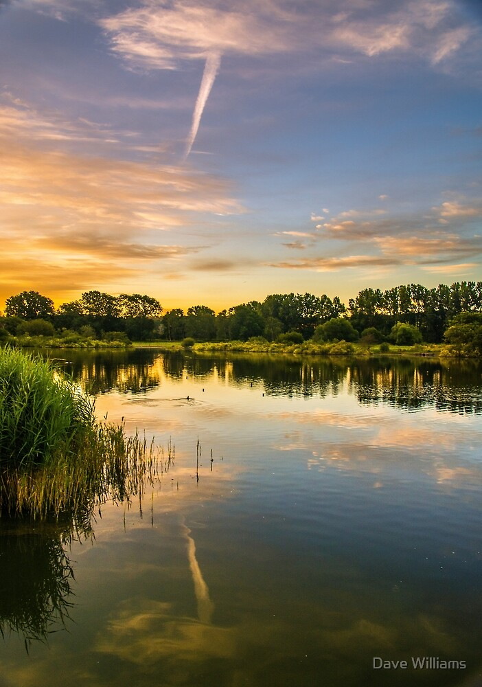 Early hours at Holmethorpe Lagoons Nature Reserve by Dave Williams