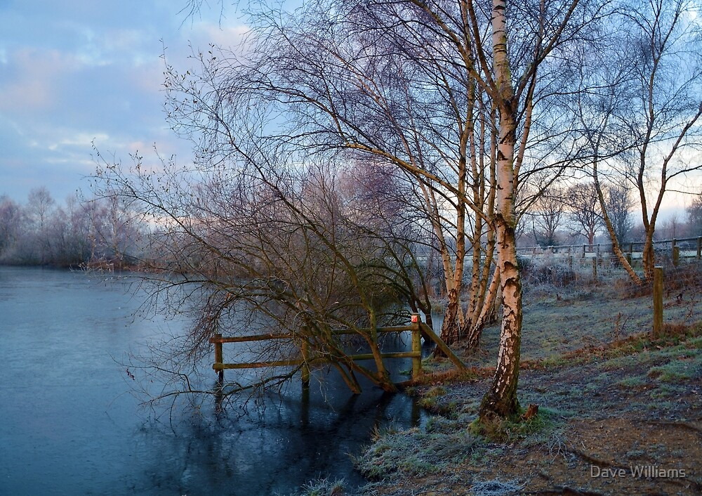 Horseshoe Lake in Winter  by Dave Williams