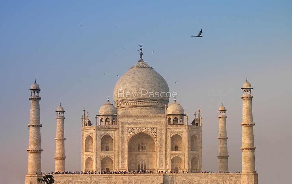 Taj Mahal, Agra India by Bev Pascoe