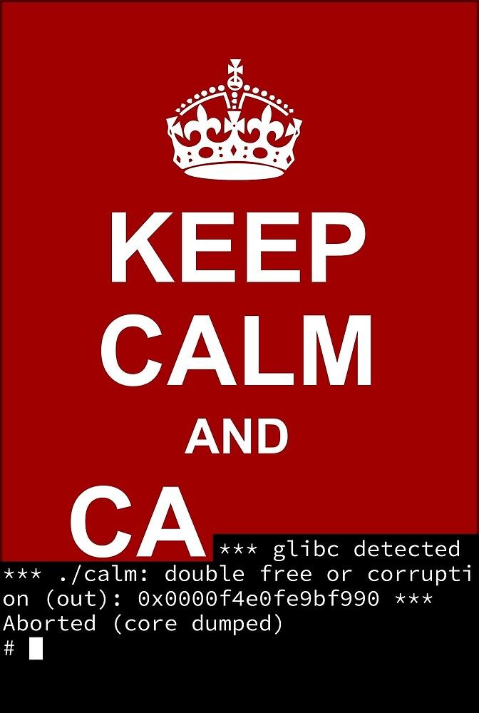 Keep calm and... SegFault! by Ange Albertini