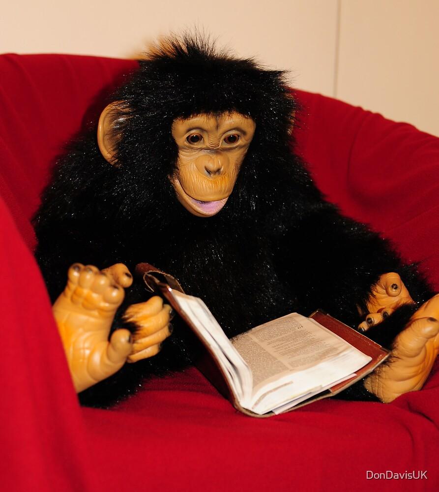 Evolution: Monkey Business by DonDavisUK