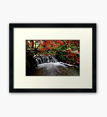 """""""Autumn's Water Fall in Red"""" Framed Print"""