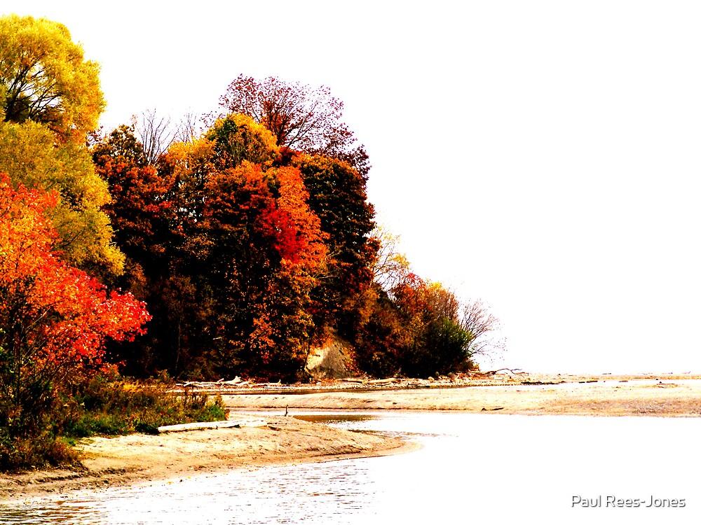 Electric Autumn by Paul Rees-Jones