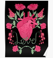 Anatomical Love Poster