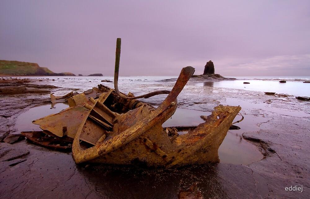 Black Nab Shipwreck by eddiej