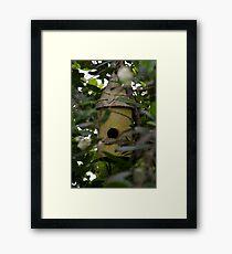 Bird Hideaway Haven Framed Print
