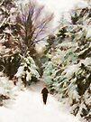 A Walk in the Winter Woods by Menega  Sabidussi