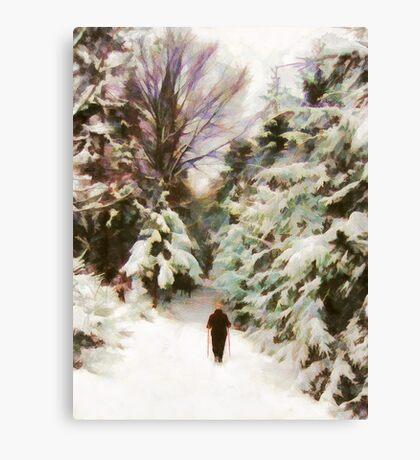 A Walk in the Winter Woods Canvas Print