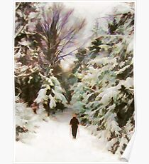 A Walk in the Winter Woods Poster