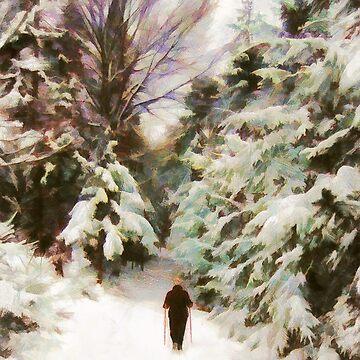 A Walk in the Winter Woods by MenegaSabidussi