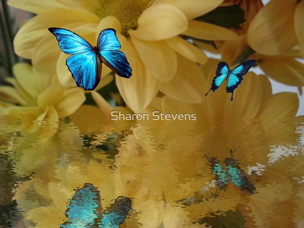 Pure Beauty by Sharon Stevens