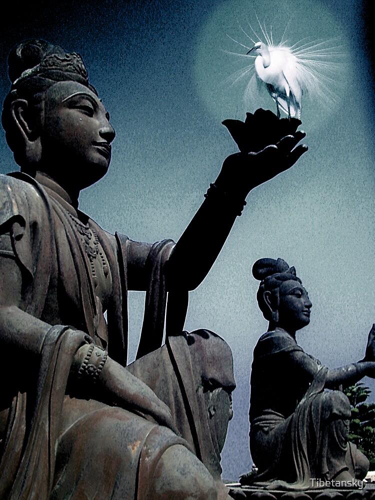 Buddha teaching by Tibetansky