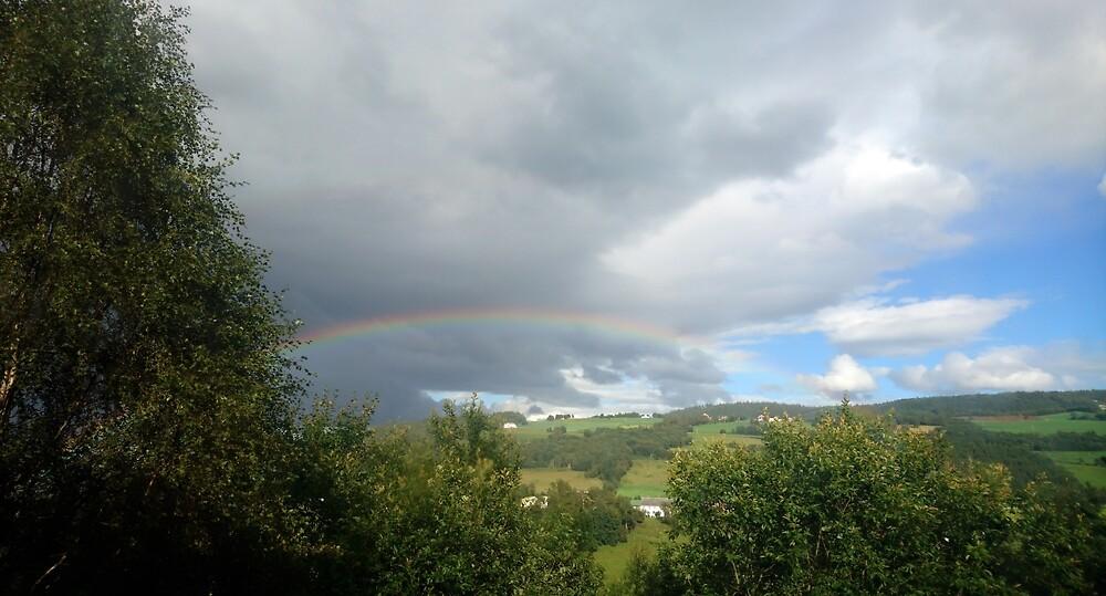 Elusive Rainbow by svehex