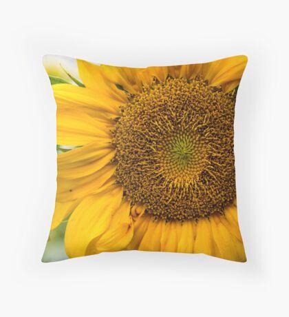 Sunflower in Bloom # 1 Throw Pillow