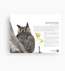 Great Horned Owl Infographic Canvas Print