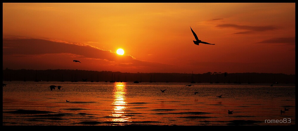 Brownsea sunset by romeo83