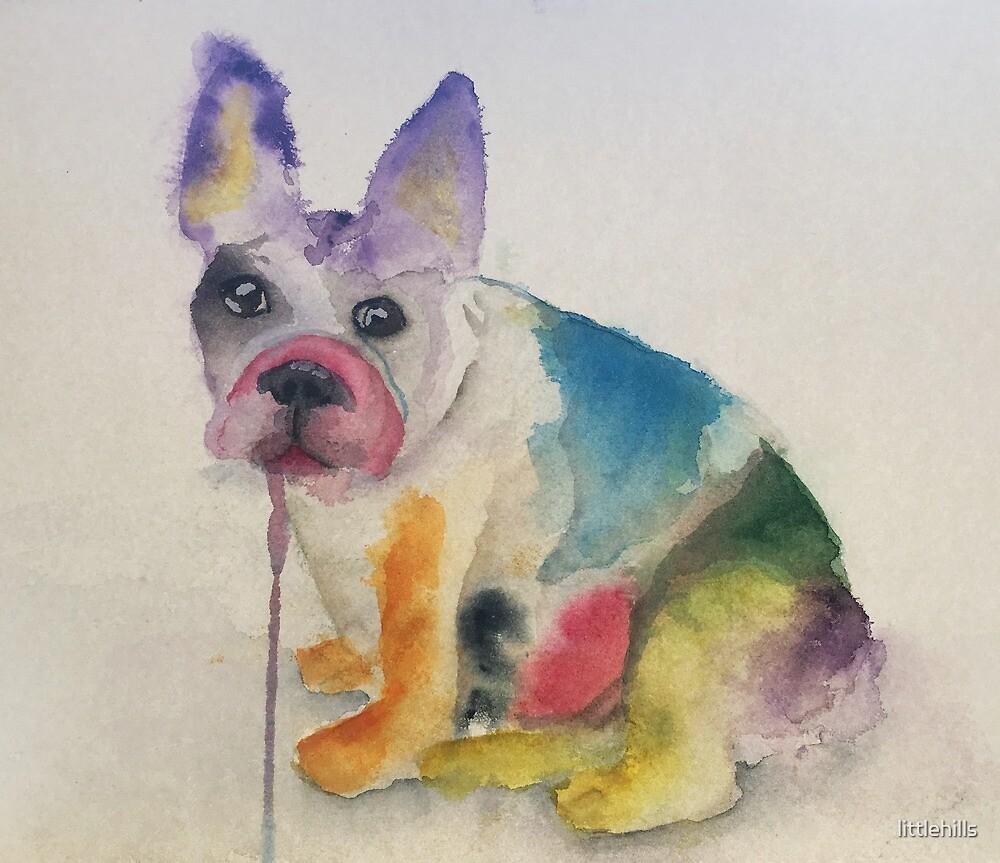 French Bulldog by littlehills