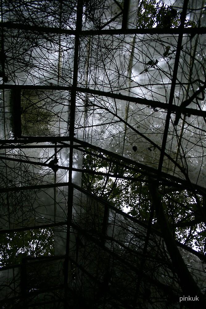 Green House 3 by pinkuk
